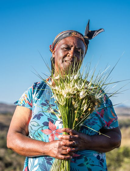 Coletores de flores: Patrimônio Agrícola Mundial